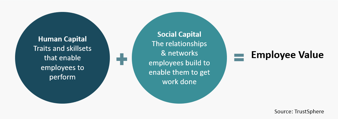 social capital pdf